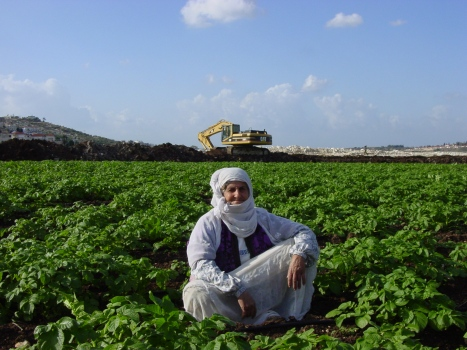 168 - Woman on her land in Isla - november 2002