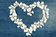 13548255-heart-symbol-made-from-flowers-on-jeans-texture